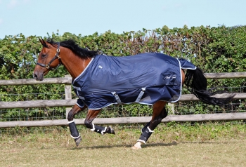 JHL Ultra Fly Relief Combo Rug