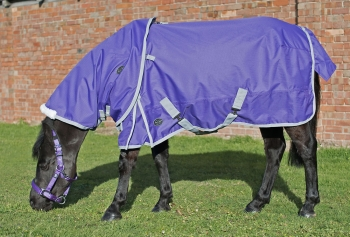 Mark Todd Lightweight Pony Turnout Neck Cover Purple/Grey