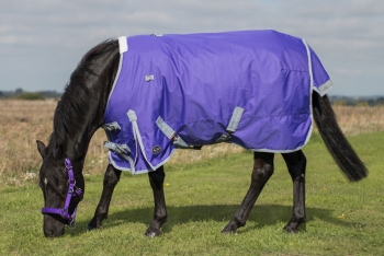 Mark Todd Lightweight Pony Turnout Rug Purple/Grey