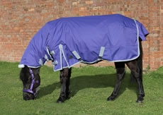 Mark Todd Mediumweight Pony Turnout Rug Purple/Grey