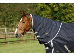 Mark Todd Heavyweight Turnout Rug with Neck Included Navy/Jade