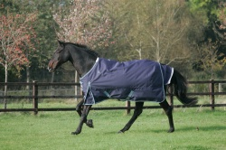 Mark Todd Heavyweight Turnout Rug